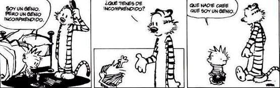 Comic 08.10.04 - Calvin & Hobbes: Genios Incomprendidos