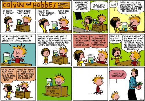 Calvin, Hobbes y la crisis economica